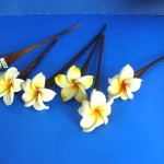 foam-plumeria-flower-wooden-hair-pick, Hawaiian Olu Olu Flower bulk direct