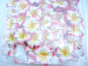 wholesale hats suppliers. Foam plumeria flower hair clips in assorted tropical colors. Handmade handpainted in Bali Indonesia.