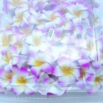 Natural jewelry wholesale supplier. Stand along foam plumeria flowers in assorted colors. Great as floating decoration on water. Please let us know by email or phone, if you want single color or assorted mix color. If not specified, we will give you mixed colors.