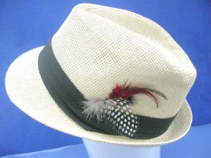 women top hat with feather decoration, beige / very light brown