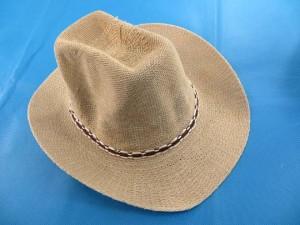 fedora-hat-2c