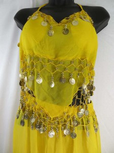 Belly dance costume top and pant set with decorative coins