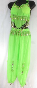 belly-dance-costume-top-pant-set-1t