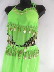 belly-dance-costume-top-pant-set-1u