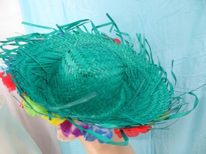 mexican-sombrero-hats-10-party-cap-aloha-hawaiian-flower-lei-j