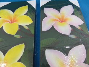 plumeria-flower-kamboja-oil-painting-canvas-1g