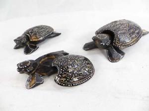 turtle-set-6c