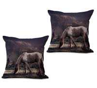 2cushioncover004