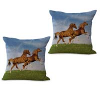 2cushioncover006