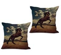 2cushioncover007