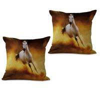 2cushioncover008