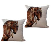 2cushioncover021