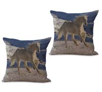 2cushioncover031