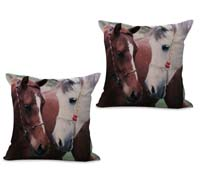 2cushioncover038