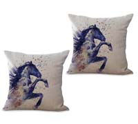 2cushioncover042