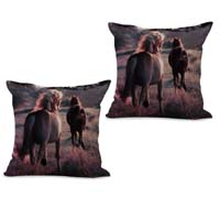 2cushioncover044