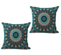 2cushioncover091