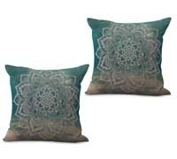 2cushioncover095