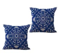 2cushioncover109